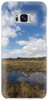 Lake Lizzie Marsh phone case
